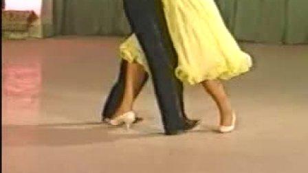 国标舞教学视频大全01-在线收看