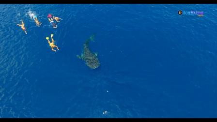 马达加斯加诺西贝岛海洋游览精彩视频