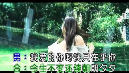 杨美华+月下思故人-爱不停息