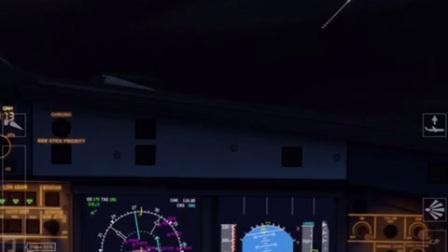 Aerofly fly FS 2 A320夜晚着陆
