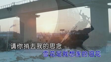 赵真 - 佳木斯的雪