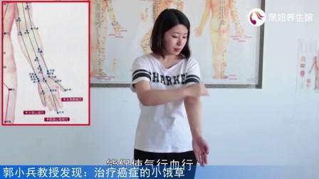 郭小兵教授:心梗急救法-拍肘窝