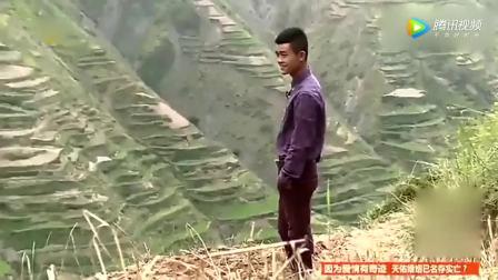 变形计: 两个富二代少爷去地里用村长毛驴犁地