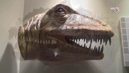 《世界恐龙谷》韩小梅、文平摄制