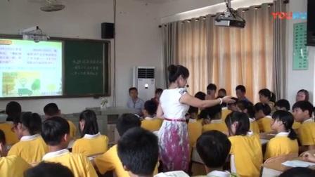 海南省初中思想品德优质课《承担对社会的责任》教学视频,麦苗