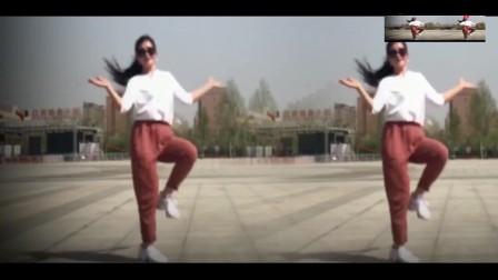 广场舞鬼步舞教学舞步《愿做菩萨那朵莲》鬼步舞视频