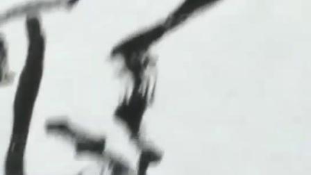 《桃花流水鳜鱼肥》竹枝桃花鳜鱼  写意花鸟、国画技法、老年大学、祝建永示范
