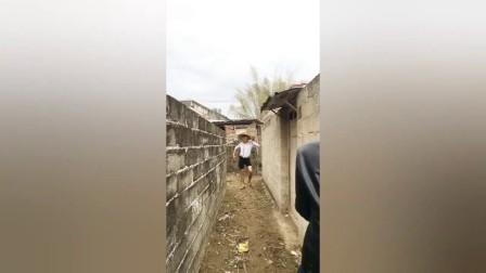 搞笑视频:农村小伙偷木瓜,没想到早有人在等他上钩