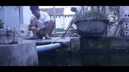 快乐钓鱼人: 这里的钓鱼资源, 蹲在自家门口就可以作钓, 好羡慕!