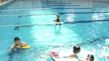 小学体育人教版五六年级《4.蛙泳完整动作》辽宁孙世轶