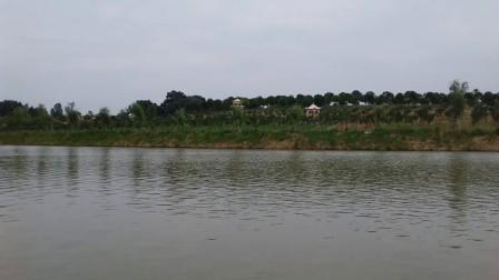 武汉市新洲区潘塘街罗杨村花朝河湾风景旅游胜地