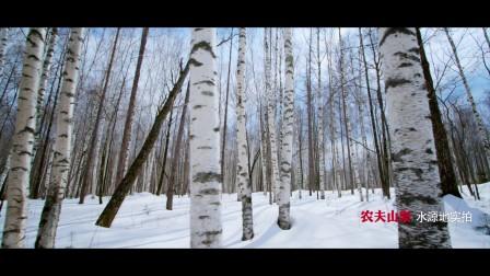 NF长白山野生动物冬季篇版本260加提示音加角标无字幕mp4