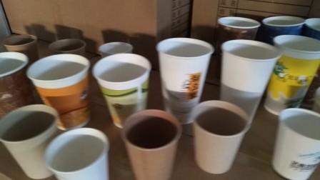 一次性纸杯生产现场录制