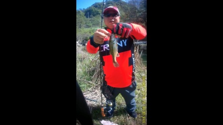 New Stream Serie Trout Rod caught bass