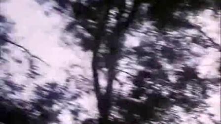 万里山水演唱:我们的生活充满阳光  电影《甜蜜的事业》插曲