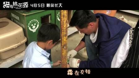 """《猫与桃花源》""""流浪的终点""""猫公益线下活动"""