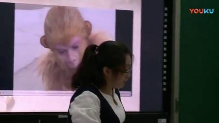 1人教版小学语文五年级下册《21 猴王出世》天津市省级优课