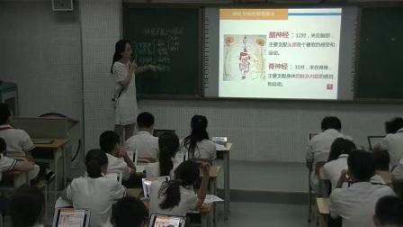初中生物人教版七下《6.2 神经系统的组成》广西潘婉婷