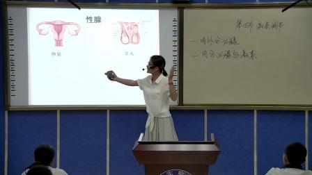 初中生物人教版七下《6.4 激素调节》广西胡丽霞