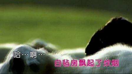 彤香 - 草原情(HD)