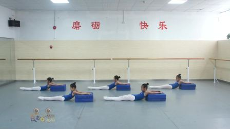 2018少儿舞蹈基本功训练教材全套舞蹈教学视频之中级2耗反肩