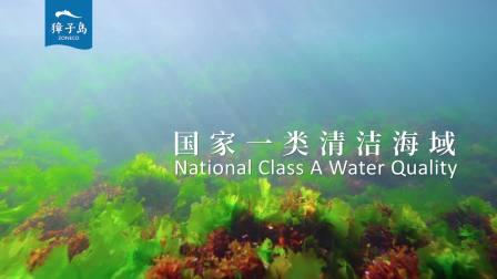 獐子岛《原生天养好海参》