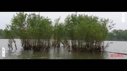 游在明光-女山湖