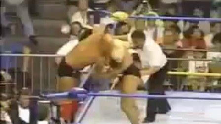 RIC FLAIR VS 藤波辰爾 1991 WCW世界重量级冠军赛