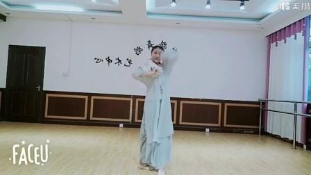 阜阳艺路成人古典舞风筝误视频片段