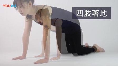 美女健身 -  用简易瑜伽舒缓经痛 - 猫_牛式_标清