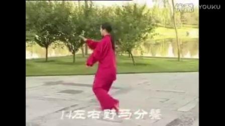 吴阿敏40式杨式太极拳 音乐口令_标清
