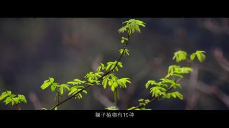 江西省宜丰县官山自然保护区