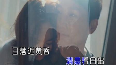 张冰丽-你是我的男神 红日蓝月KTV推介