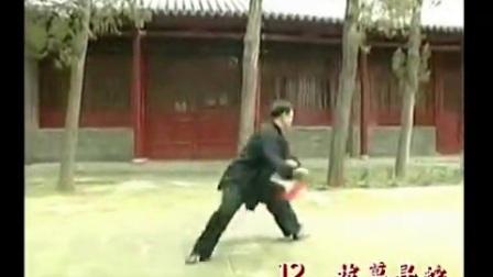 陈式太极剑49式 张东武老师完整演示