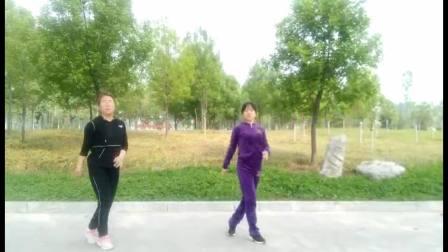 林州紫果广场舞 远走高飞