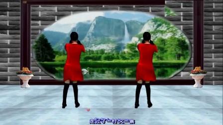南之新女女广场舞《女人是老虎》正背面附分解