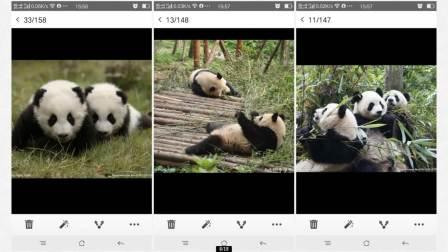 中华文化网络大课堂 --- 国画课(熊猫的画法)