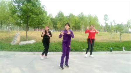 林州紫果广场舞 远走高飞 团队版