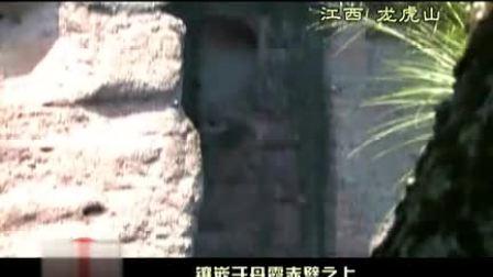 北京信汇盈投资有限公司{}花凋残露