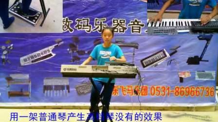 打虎上山-毕小影便携双排三排键手风琴伴式电子琴脚电子鼓独奏