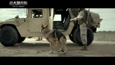 """《战犬瑞克斯》""""全民""""版预告 人犬并肩作战完美诠释""""战友情"""""""