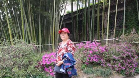 快乐扬州假日游(二)扬州园林,