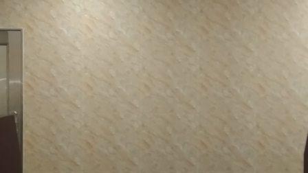 立体音场-《张学友》流行曲的节奏控制 (三相全独立滤波电源)