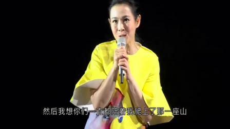 2017刘若英演唱会