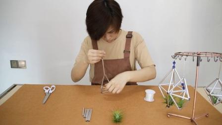 空气凤梨几何植物架
