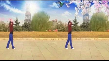 64步形体广场舞《麻烦是位朋友》正反面附口令分解教学