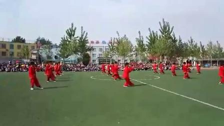河北省宁晋县北新艺术小学
