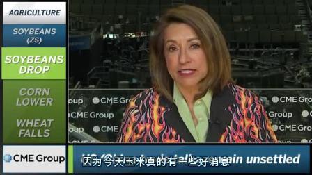 芝商所市场评论- 财经视频 2018 年5 月7