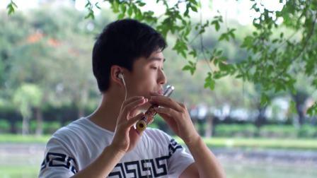 风筝误-降E竹笛演奏  优美动听  高档竹笛了解一下?