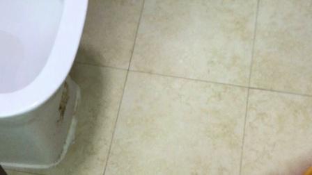 天品工程:入住后卫生间渗漏水业主就头大了!